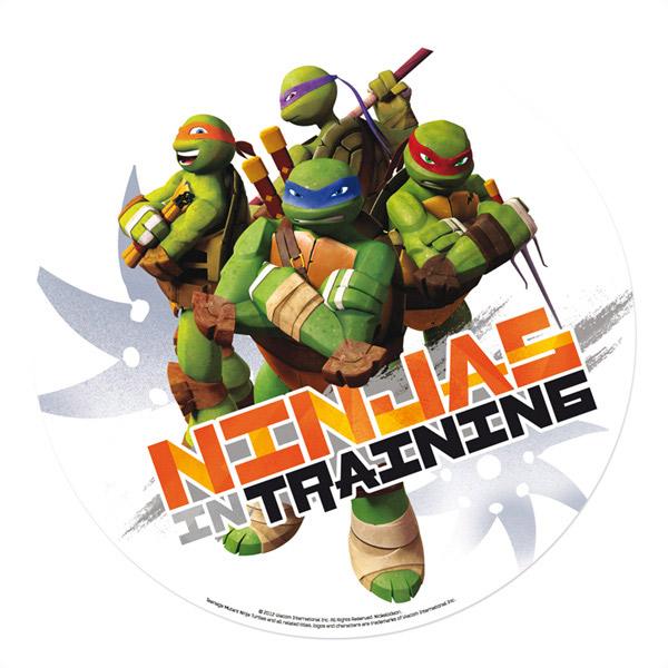 Déco gateau tortue ninja